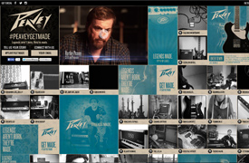 Peavey electronics  Web Design and development