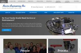 Service Engineering Web Design and development